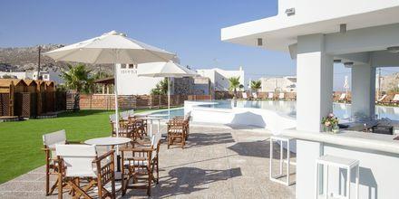 Allasbaari, Hotelli Pserimos Villas, Kreikka.