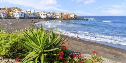 Ranta, Puerto de la Cruz, Teneriffa, Kanariansaaret.
