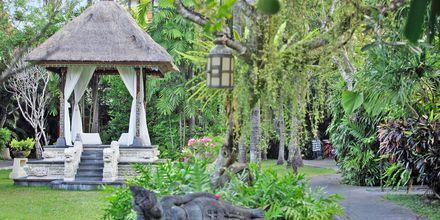 Puutarha, Puri Santrian, Sanur, Bali.