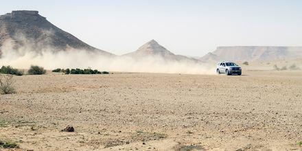 Aavikkosafari – mieleenpainuva kokemus Qatarissa.