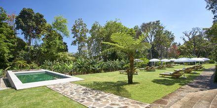 Allas aikuisille, hotelli Quinta da Casa Branca, Funchal, Madeira.
