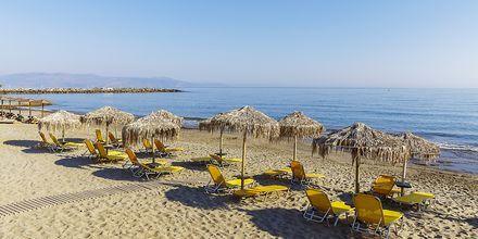 Hotelli Rania, Platanias, Kreeta – Rantaa