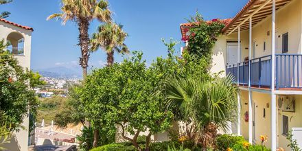 Hotelli Rethymno Mare Resort, Kreeta.