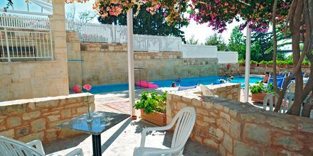 Jaettu uima-allas perhehuoneen yhteydessä, Hotelli Rethymno Mare Resort, Kreeta.