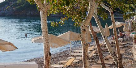 Nauti kauniista päivistä Samoksen kaupungissa, Kreikka.