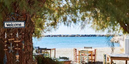 Ormos sijaitsee meren rannalla.