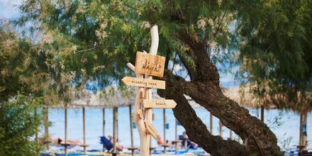 Nauti kauniista päivistä Pythagorionin rannalla.