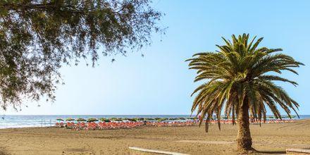 Ranta, San Augustin, Gran Canaria, Espanja.