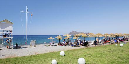 Ranta, Hotelli Santa Helena Beach, Platanias