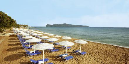Läheinen ranta, Hotelli Giannoulis Santa Marina Beach, Agia Marina, Kreeta.