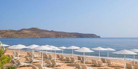 Ranta. Hotelli Santa Marina Plaza Giannoulis Hotels, Kreeta, Kreikka.