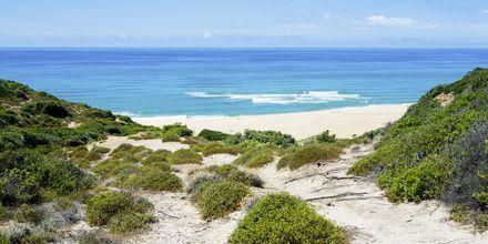 Scivu Beach Sardiniassa.