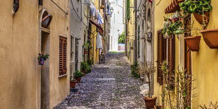 Algheron kaupunki, Sardinia.