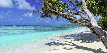 Seychellit Sää