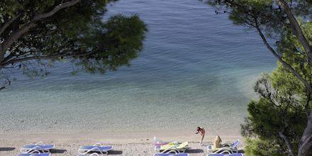 Ranta, Hotelli Simic, Makarska, Kroatia.