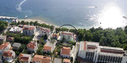 Simic, Makarska.