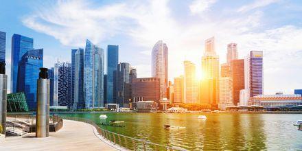 Singapore on tunnettu pilvenpiirtäjistään, jotka kohoavat korkeuksiin.
