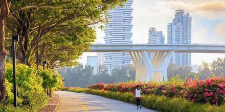 Nauti vehreydestä ja modernista ympäristöstä Singaporessa.