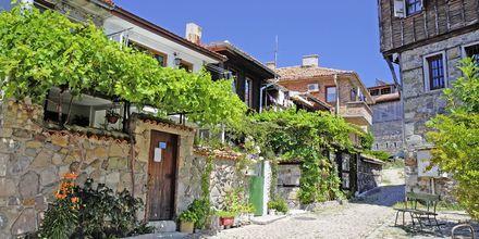 Vanha kaupunginosa, jossa kiemurtelevat muratit, kukat ja viiniviljelmät. Sozopol, Bulgaria.