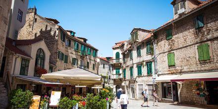 Viikko päättyy Splitiin. Täällä sinua odottaa opas kaupunkikierrosta varten.