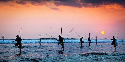 Kalastajia Sri Lankassa.