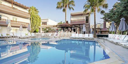 Hotelli Summer Dream - Allasalue