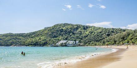Nai Harnin ranta sijaitsee noin 300 metrin päässä hotellilta. Hotellilta on päivittäin maksuton bussikuljetus rannalle.
