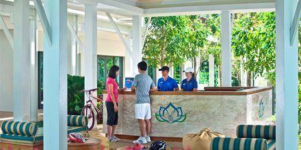Aktiviteettitiski. Thanyapura Sport & Health Resort, Thalang, Thaimaa.