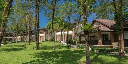 Puutarha, Hotelli The Leaf Oceanside by Katathani, Khao Lak, Thaimaa.