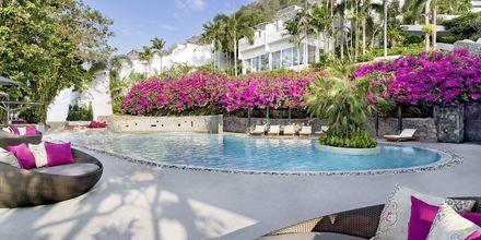Allasalue, hotelli The Nai Harn Phuket, Thaimaa.