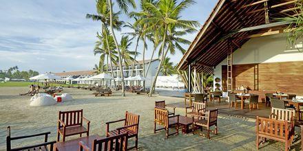 Ravintola Fruits de Mar, The Surf, Bentota, Sri Lanka.