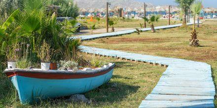 Kauniit maisemat Tigakissa, Kos, Kreikka.