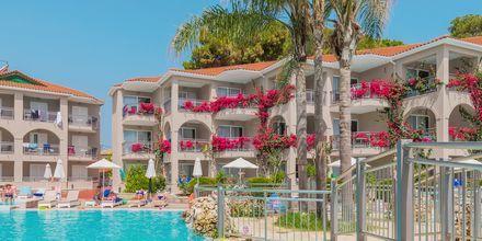 Allasalue. Hotelli Tsilivi Beach, Zakynthos, Kreikka.