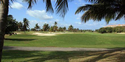 Varadero - Golfkenttä
