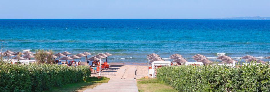 Banana Beach. Vasilikos, Zakynthos.