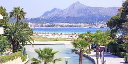 Läheinen ranta, Hotelli Venecia, Alcudia, Mallorca.