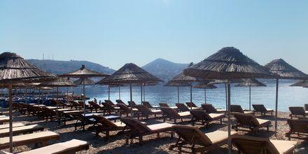 Läheinen ranta, Hotelli Vila Kalcuni, Saranda, Albania.
