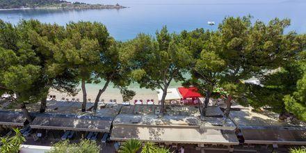 Näkymä rannalle, Villa Ankora, Makarskan Riviera.