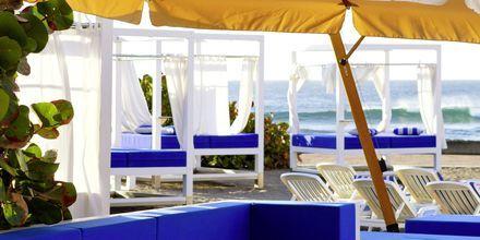 Maui Beach hotellin rannalla.
