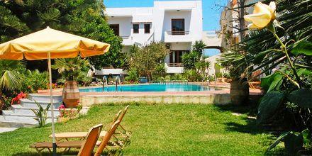 Allasalue. Villa Dora, Platanias, Kreeta, Kreikka.