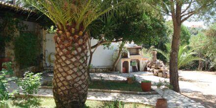 Hotelli Villa Heivi. Sivota, Kreikka.