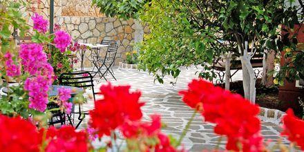 Hotelli Villa Marie. Sivota, Kreikka.