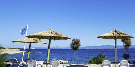Ranta, Waterman Beach Village Bungalow, Brac, Kroatia.