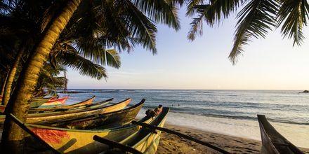 Mirissa Beach, Sri Lanka.