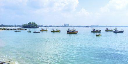 Kalastaveneitä. Weligama Bay, Sri Lanka.