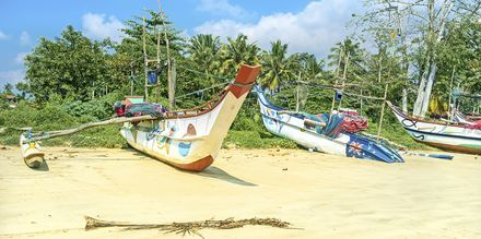 Kalastajaveneitä Weligama Bayssa Sri Lankassa.