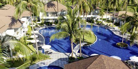 Allasalue, Hotelli X10 Khao Lak Resort, Khao Lak.