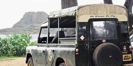 Yalan luonnonpuisto Sri Lankassa.