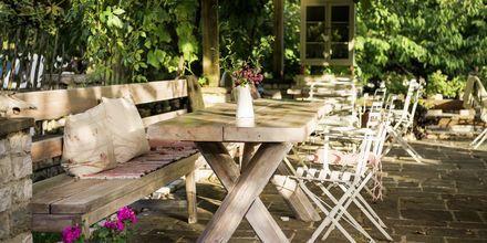Lounastauko kylän viihtyisässä kahvilassa, Zagorian alue, Kreikka.